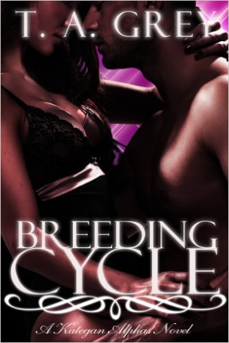 Intriguing Free Steamy Romance!