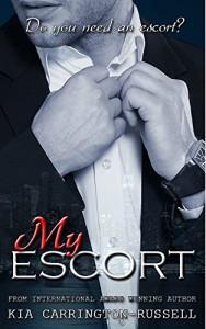 Free Funny, Romantic & Brilliantly-Written Novel!