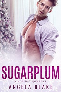 $1 steamy Holiday Romance Deal of the Day