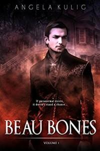 $1 Steamy Paranormal Romance Novel
